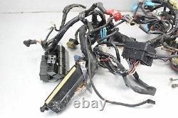 1997 Triumph Daytona T595 955i Main Engine Wiring Harness Motor Wire Loom