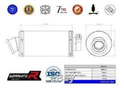 Exhaust silencer muffler DOMINATOR GP I TRIUMPH DAYTONA 955i 02-06 + DB KILLER