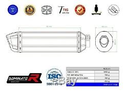 Exhaust silencer muffler DOMINATOR HP1 TRIUMPH DAYTONA 955i 02-06 + DB KILLER