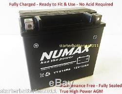 Numax YTX14-BS TRIUMPH Daytona 955i, Sprint ST RS 99-04 AGM/Gel Upgrade Battery