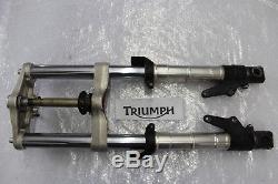 Triumph Daytona 955i T595 Gabel Vorderradgabel mit Gabelbrücke Front Fork #R3720