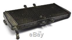 Triumph Daytona 955i T595 Kühler Wasserkühler