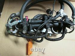 Triumph daytona 955i 2005 injectors